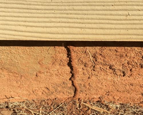 4 Signs You have Termites in your home