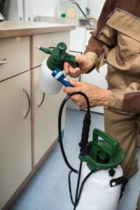 Close-up Of Pest Control Worker Hand Holding Sprayer For Spraying Pesticides On Cabinet ** Note: Shallow depth of field