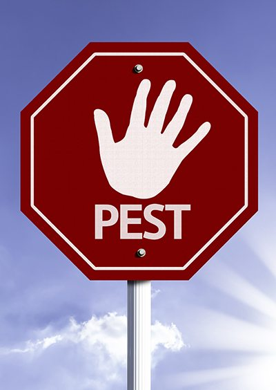 Stop Pest red sign with sun background
