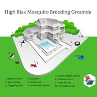 High Risk Mosquito Breeding Grounds