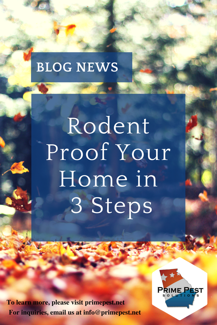 Rodent Proof Your Home In 3 Steps Prime Pest Solutions